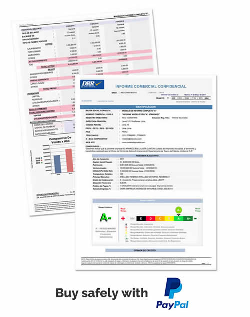 picture of a dashboard in a credit reports